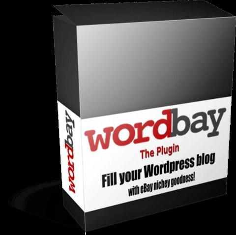 Wordbay-plugin-ecover-480x480