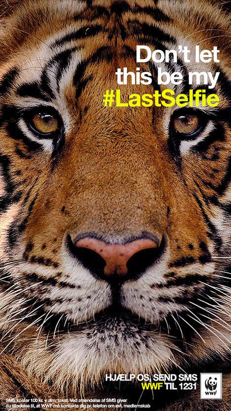 WWF-lastselfie-dk-tiger